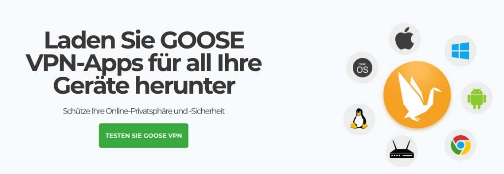 GooseVPN review