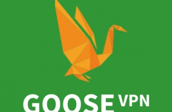 GooseVPN, Rezension 2020