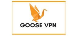 GooseVPN | Erfahrung und Kosten